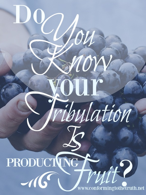 Did you know that all of your tribulations are producing fruit? Join conforming To The truth as we do an inductive Bible study in the book of Romans to see what fruit our tribulations are producing.