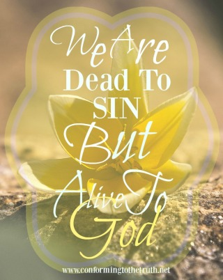 Did you know that you have died to sin once for all? Please join conforming To The Truth as we study inductively through a Bible Study in Romans. We are learning we are alive to God but dead to our sin!
