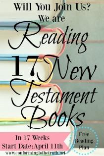 17 Week New Testament Reading Plan