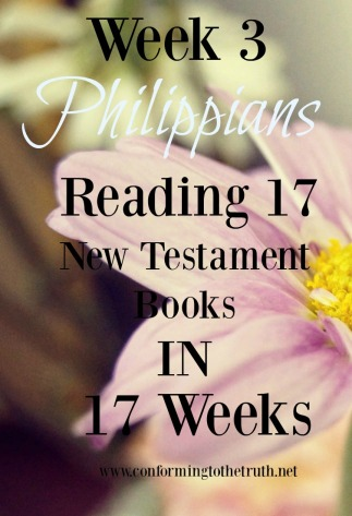 https://conformingtothetruth.net/2016/03/11/reading-17-new-testament-books-in-17-weeks/